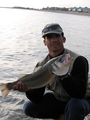 Lubina de 3kg - Raulubi, Huelva 2005