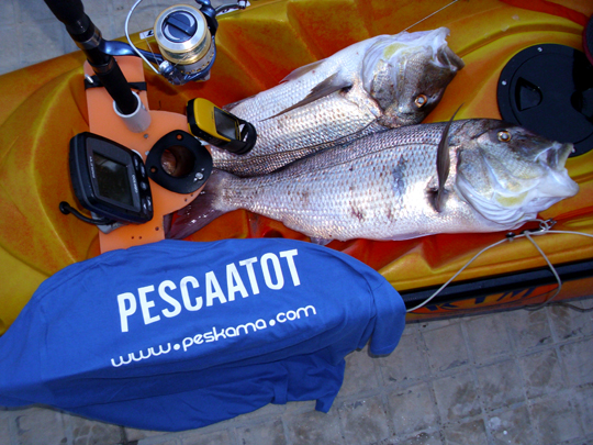 OD_Pescaatot_04 ©PESKAMA2012