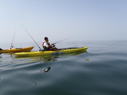 Primeras carreras de la corvina con el kayak a remolque.